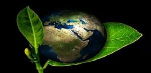 ecologie esg environnement terre