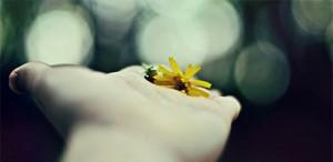 hand fleur